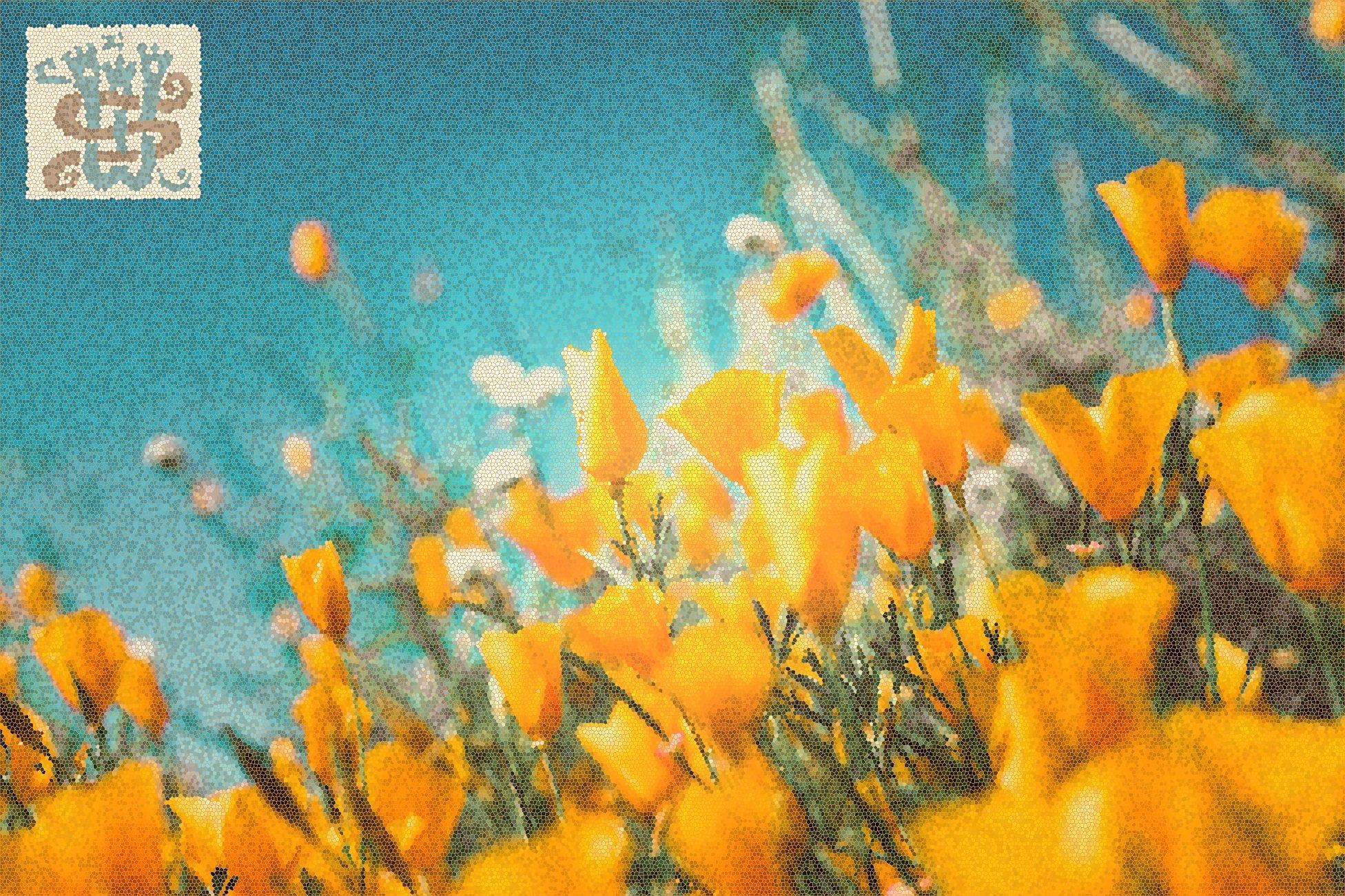 Gruppo di fiori gialli, gioia della festa di Ferragosto